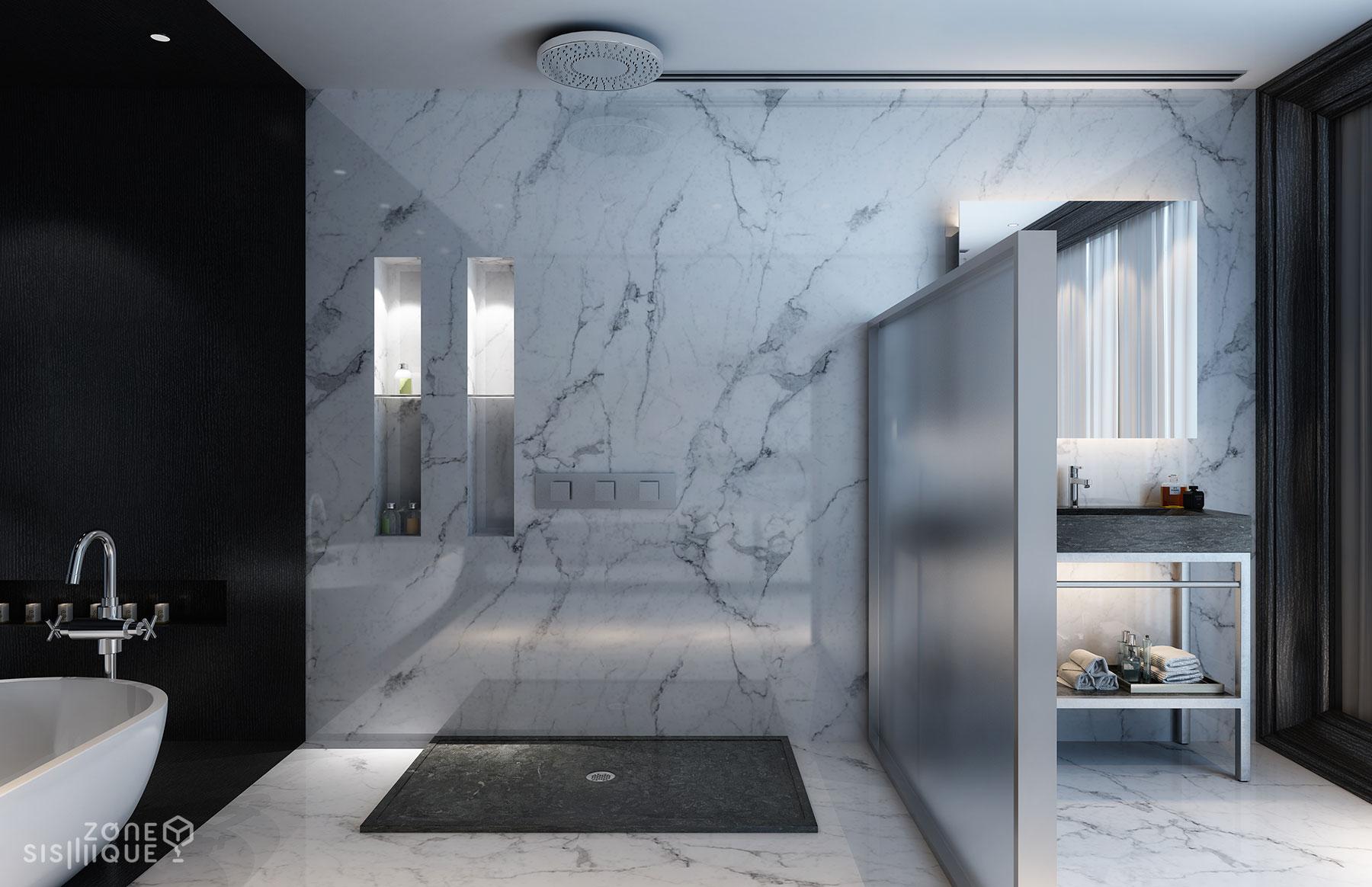 zone salle de bain maison moderne